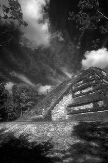 Tikal012bw