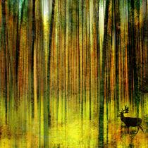 Hirsch auf der Pirsch von Matthias Rehme