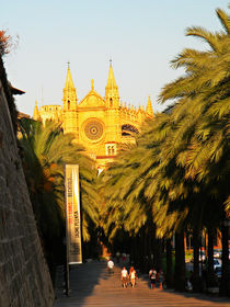 Majorca walking street to the Cathedral  by marga-sol