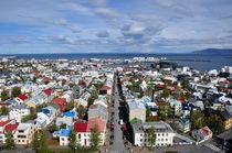 Reykjavik houses by Alyssa De Stefano