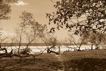 Avellanas, Costa Rica by Adriana Schiavon