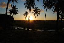Sunset in Bahia by Adriana Schiavon