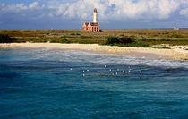 Klein Curacao Sea by Adriana Schiavon