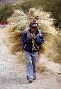 A peasant of Colca Valley by RicardMN Photography