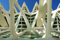 Valencia, Museo de las Ciencias 2 von Frank Rother