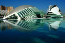 Valencia, Hemisfèric y Palau de les Arts  by Frank Rother