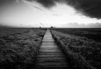 B&W Natur prints by sakis-iatropoulos-photography