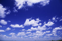Fluffy White Clouds with Blue Sky In Background von Wolfgang Kaehler