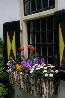Flowers In Window Box von Wolfgang Kaehler