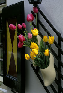 Wooden Shoe with Tulips by Wolfgang Kaehler