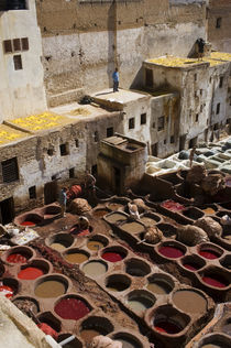 Overview of Tanneries by Wolfgang Kaehler