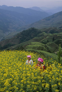 Zhuang Women In Canola Field (Rape Seed) by Wolfgang Kaehler