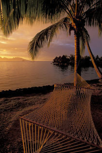 Hammock at Sunset by Wolfgang Kaehler