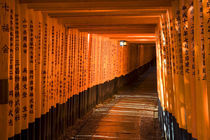 Torii Gates (Offerings) by Wolfgang Kaehler