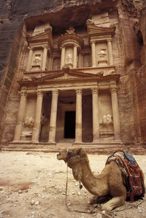 Treasury with Camel by Wolfgang Kaehler