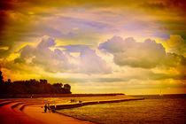 Montrose Pier by Milena Ilieva