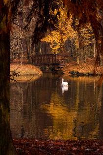 Song-of-autumn-fullsize