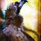 Finer-feathered-friends-vulture-2