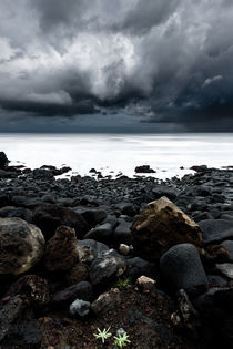 The storm by Jorge Maia