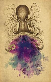 Octopus von axel haudiquet