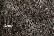Remember me by axel haudiquet