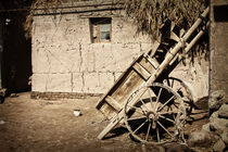 Old bullock-cart in Khiva by Diana Kartasheva