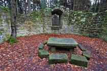 Alte historische Kapelle im Wald von Wolfgang Dufner