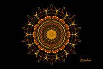 Queen Bee Sunflower (signed) by Richard H. Jones