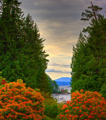 Vancouver Island.Summer time by Michael Latman