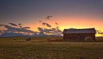Montana by Michael Latman