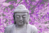 buddha bamboo (violet) by hannes cmarits