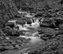 Alva Burn, Clackmannanshire BW by Buster Brown Photography