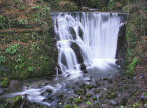 Alva Glen Waterfall by Buster Brown Photography