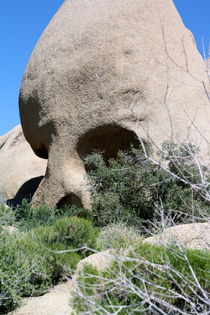 Skull Rock by May Kay