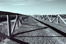 Camino al estero von Jose Luis Ogalla Larramendi