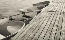 Sepia dinghys. by John Greim