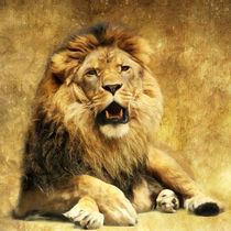 The King by AD DESIGN Photo + PhotoArt