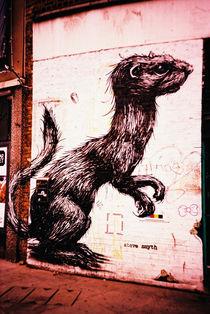 Graffiti by Giorgio Giussani