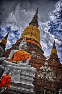 Buddha Ayutthaya Thailand by Gianluca Colombi