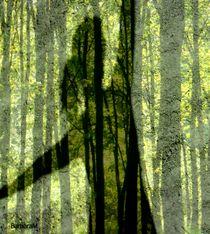 Shadow Dancer 4 von barbaram