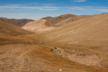 Altai Mountains,  Mongolia (J.Lekavicius) by jlekaviciusphotography