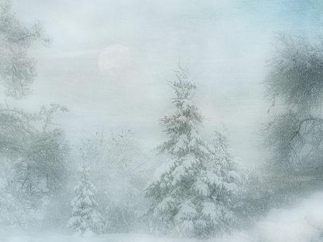 Winter2c