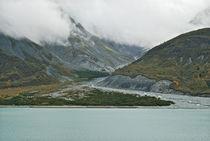 Glacier Bay Tarr Inlet von Michael Peychich