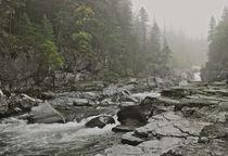 Glacier-national-park-fog-dsc-9225