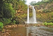 Wailua Falls aka Fantasy Island Falls von Michael Peychich