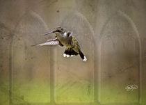 Angel Wings Series Image One by Cris  Hayes