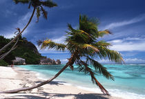 Seychelles - La Digue by martino motti