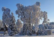 Winter im Erzgebirge by Wolfgang Dufner