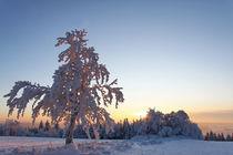 Sonnenuntergang in Winterlandschaft by Wolfgang Dufner