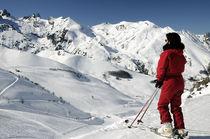 Ski panorama by martino motti
